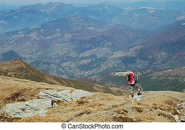 bergen, trekking, man
