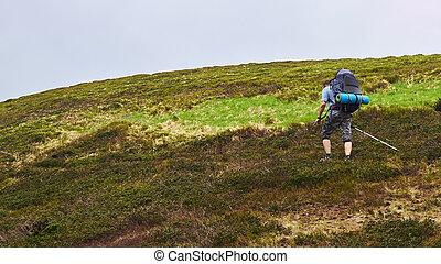 bergen, wandelende, groep, hikers