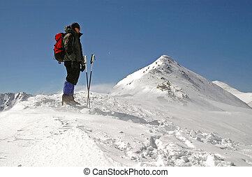 bergen, winter, wandelende
