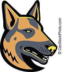 berger allemand, chien, mascotte