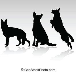 berger allemand, vecteur, chien, silhouet