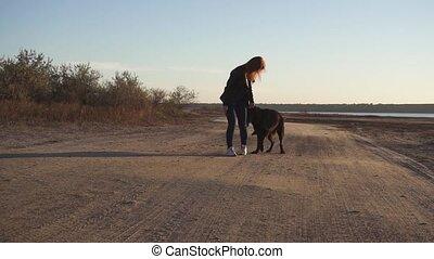 berger, caresser, elle, allemand, (sunrise)., chien, aller, noir, route, roux, maîtresse, girl, plage, long, coucher soleil, (master)