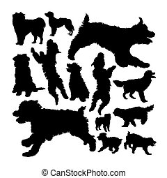 berger, chien, silhouettes., pyrenean