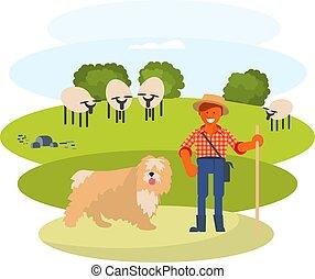 berger, chien, vacher, homme