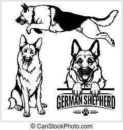 berger, ensemble, allemand, -, chien, illustration, isolé, vecteur, fond, blanc