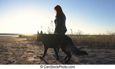 berger, marche, caresser, joli, elle, allemand, chien, il, jeune, (sunrise), femelle noire, roux, coucher soleil, (scratching), plage, côté