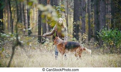 berger, marche, lent, automne, elle, allemand, -, jeune, chien, cheveux, chouchou, buisson, femme, courses, forêt, crosse, jouer, mouvement, rouges, séduisant