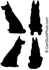 berger, vecteur, silhouette