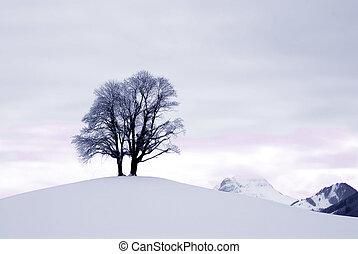 bergrücken, schnee