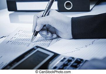 bericht, analysieren, numerisch