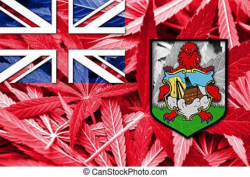 bermuda kennzeichen, auf, cannabis, hintergrund., droge, policy., legalization, von, marihuana