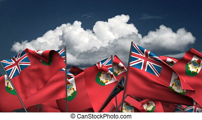 bermudes, onduler, drapeaux