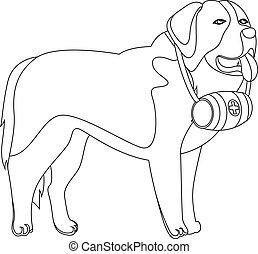 bernard, st, salvavita, contorno, cane