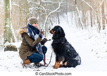 bernese, dia, andar, montanha, mulher, cão, inverno
