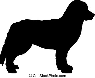 Bernese Mountain silhouette black - Bernese Mountain ...