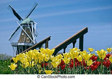beroeren, hollandse