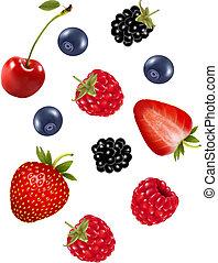 berries., セット, 水分が多い, vector.