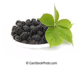 Berries and leaves of blackberry.