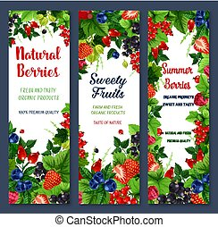 Berries and sweet fruits vector banners set