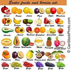 berries., exótico, conjunto, ilustración, fruits