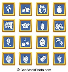 Berries icons set blue