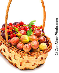 Berries in the basket isolated on white