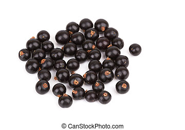black currant - Berries of a black currant on a white...