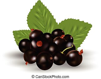 Berries Of Black Currant With Green Leaves Isolated On A White Background.