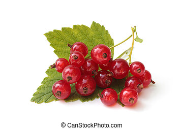 Berries of red currant with leaves