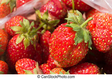 Berries of ripe red strawberries in a plastic bag