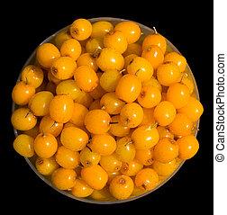 Berries of sea-buckthorn 2