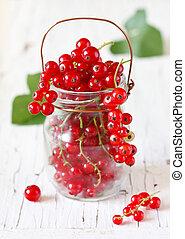berries., redcurrant