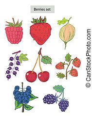 berries set detailed illustration