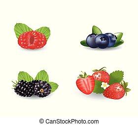 Berries set