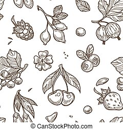 Berries sketch vector seamless pattern background
