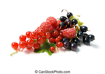 berries., wild
