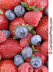 Berry Berrylicious 1 - A mouthwatering vertical display of...