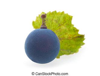 Berry blue grape
