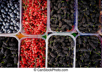 Berry fruits in baskets at a marketplace. mixed berries at eco market