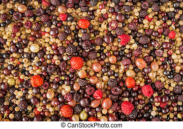 Berry mix background different berries, gooseberries, ...