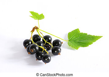 berry on white