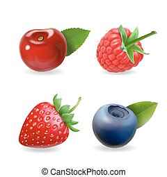 Berry set. Forest realistic sweet fruit vector icon illustration