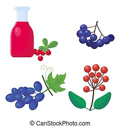Berry syrup bottle colorful cartoon icons for thanksgiving day berries holiday vector design autumn season celebration