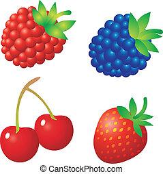 Set of fruit vectors. To see similar, please VISIT MY PORTFOLIO