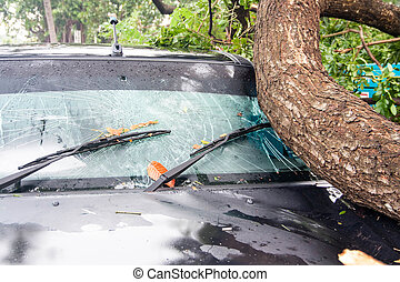 beschadigd, auto