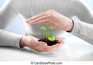bescherming, landbouw