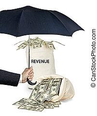 bescherming, van, inkomsten