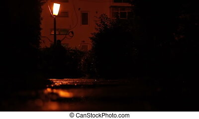 Besides Lantern Night Silhouettes - On a cold wet night,...