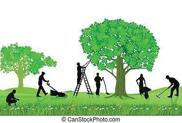 beskärning, trädgårdsarbete, planterar