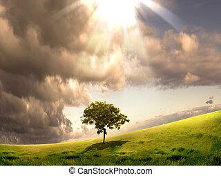 beskaffenhet landskap, med, skyn